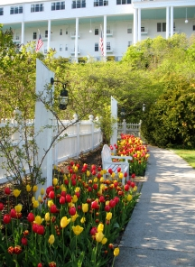 Tulips at the Grand Hotel