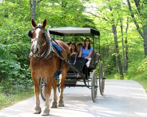 Family drives carriage at Mackinac